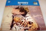 Viata printre Tigri (partea II) - DVD - Documentar Discovery Channel