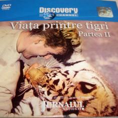 Viata printre Tigri (partea II) - DVD - Documentar Discovery Channel - Film documentare