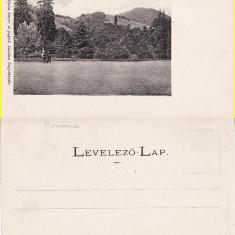 Baia Mare - clasica - Carte Postala Maramures pana la 1904, Necirculata, Printata