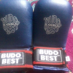 Manusi budo best - Kickboxing