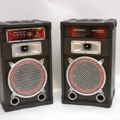 SISTEM 2 BOXE ACTIVE/AMPLIFICATE,MIXER INCLUS,250 WATT P.M.P.O,ORGA LUMINI,MP3 PLAYER+2 MICROFOANE BONUS.
