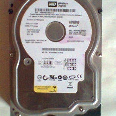 HARD DISK Western Digital WD800BB PATA IDE 80GB 3.5