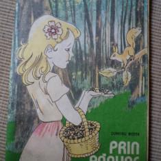 DUMITRU RISTEA PRIN PADURE cateva incepute colorate carte pentru copii hobby - Carte de colorat