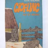Cioflinc - Pui de mistret - Carte educativa