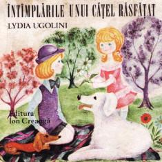 INTAMPLARILE UNUI CATEL RASFATAT de LYDIA UGOLINI - Carte poezie copii