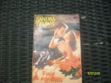 Fuga de celebritate/Sandra Brown