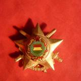 Insigna Militara Ungaria aurita - pt. sport