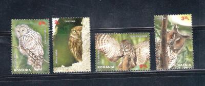 ROMANIA 2013 - PASARI RAPITOARE DE NOAPTE - LP 1984 foto