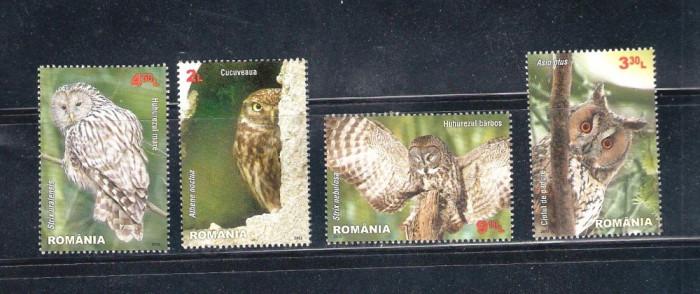 ROMANIA 2013 - PASARI RAPITOARE DE NOAPTE - LP 1984 foto mare