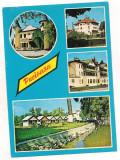 Carte postala(marca fixa)-PUCIOASA-colaj