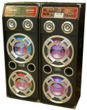 MEGA SISTEM 2 BOXE ACTIVE/AMPLIFICATE 500WATT CU BASS DE 10 TOLI,MIXER INCLUS,MP3 PLAYER+2 MICROFOANE WIRELESS BONUS!