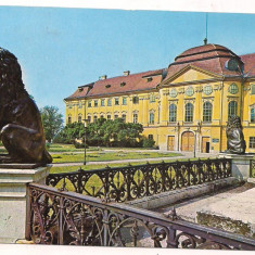 Carte postala(ilustrata)-ORADEA -Museul Tarii Crisurilor - Carte Postala Crisana dupa 1918, Circulata, Printata