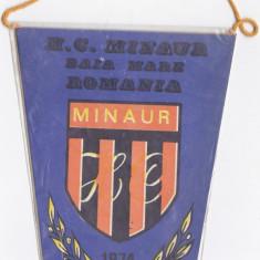 Fanion Vechi 1974 Handbal Club Miniaur, Baia Mare Romania - Fanion handbal