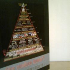 Cine conduce lumea? - Piramida puterii oculte - SILVIU ARONET - Carte masonerie