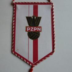 Fanion fotbal Federatia din Polonia