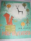 Carti/Carte copii/Carti Povesti, PUIUL DE VEVERITA,ION VLASIU,format,ilustratii