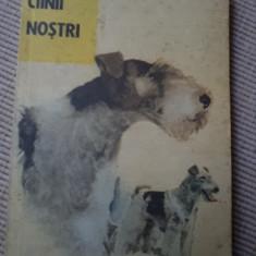 CAINII NOSTI NR 1 CAINI an 1989 ilustrata foto alb negru carte hobby rase caini