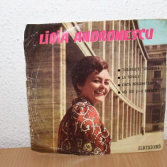 Lidia Andronescu - Tarancuta, tarancuta... (disc EP) - Muzica Dance electrecord, VINIL