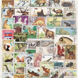 1165 - Lot timbre stampilate si nestampilate fauna