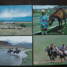 Lot de 4 carti postale Mongolia, tema cai, Necirculata, Fotografie