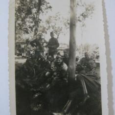 REDUCERE 15 LEI! UNICAT! FOTOGRAFIE ORIGINALA COLECTIE MILITARI WEHRMACHT, CU STAMPILA VULTURULUI NAZIST PE VERSO - Fotografie veche