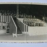 REDUCERE 20 LEI! UNICAT! FOTOGRAFIE ORIGINALA COLECTIE MILITARI WEHRMACHT, CU STAMPILA VULTURULUI NAZIST PE VERSO - Fotografie veche