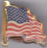 Insigna SUA  America