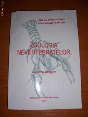 ZOOLOGIA NEVERTEBRATELOR foto
