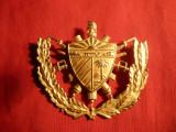 Emblema Militara de Sapca -metal aurit