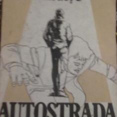 Cicerone Sbantu - Autostrada - Roman, Anul publicarii: 1986