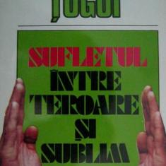 Sufletul intre teroare si sublim  -  Ion  Tugui