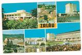 Carte postala(ilustrata)- ZALAU-SALAJ- colaj, Circulata, Printata