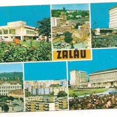 Carte postala(ilustrata)- ZALAU-SALAJ- colaj - Carte Postala Crisana dupa 1918, Circulata, Printata