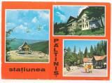 Carte postala(marca fixa)- PALTINIS-colaj