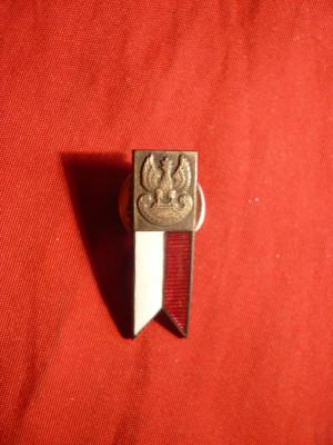 Insigna Militara Polonia - Miniatura foto