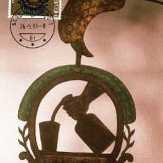 1182 - Elvetia carte maxima 1983