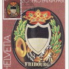 1129 - Elvetia carte maxima 1981