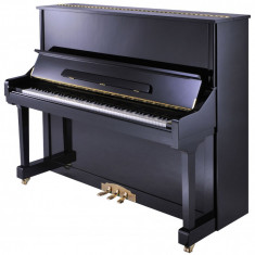 Pianina Altele Wegenstain