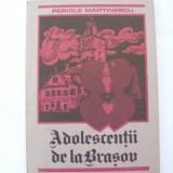 Adolescentii de la Brasov - Roman, Anul publicarii: 1991