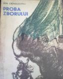 Ion Cringuleanu - Proba Zborului, 1991