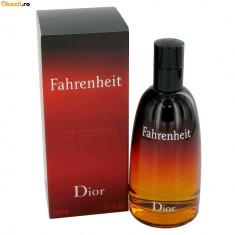 Fahrenheit Christian Dior, parfum de barbat 100 ml, replica - Parfum barbati Christian Dior, Apa de parfum, Floral