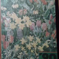 Almanahul satelor 1990