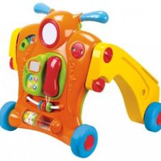 Antepremergator/tricicleta 2 in 1 multiactivitati, 6-12 luni, Multicolor