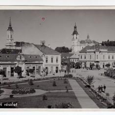 ZALAU CENTRU, ZILAH FOTER, parc biserica - Carte Postala Crisana dupa 1918, Circulata, Fotografie