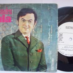 Disc vinil ( vinyl , pick-up ) ALEXANDRU JULA ( format mic EDC 10241 )( RAR )