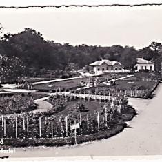 Oradea Felix ilustrata circulata in 1942