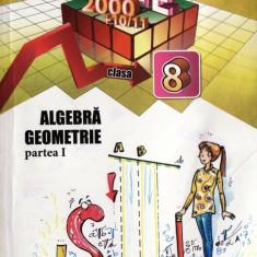 MATE 2000+ 10/11 - MATEMATICA ALGEBRA, GEOMETRIE PARTEA I CLASA A VIII A de ANTON NEGRILA ED. PARALELA 45 - Manual scolar paralela 45, Clasa 8