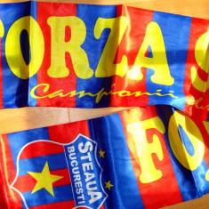 Campionii din Ghencea Esarfa Forza Steaua Esarfa Fular matase sintetica suporter - Fular fotbal, De club, Steaua Bucuresti