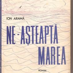(C3247) NE-ASTEAPTA MAREA DE ION ARAMA, EDITURA MILITARA, BUCURESTI, 1968