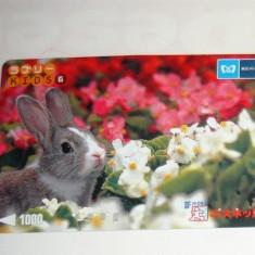 Cartela / Card Japonia - NATURA, ANIMALE - IEPURE - 2+1 gratis toate licitatiile - RBK2395 - Cartela telefonica straina